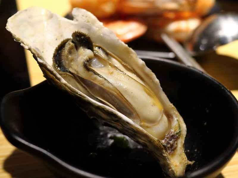 七海鍋物 - 活龍蝦、活蟹高品質新店開張
